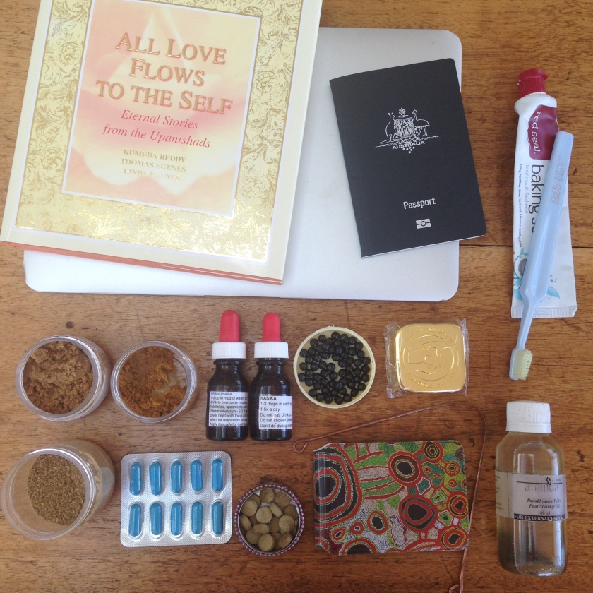 travel plane kit